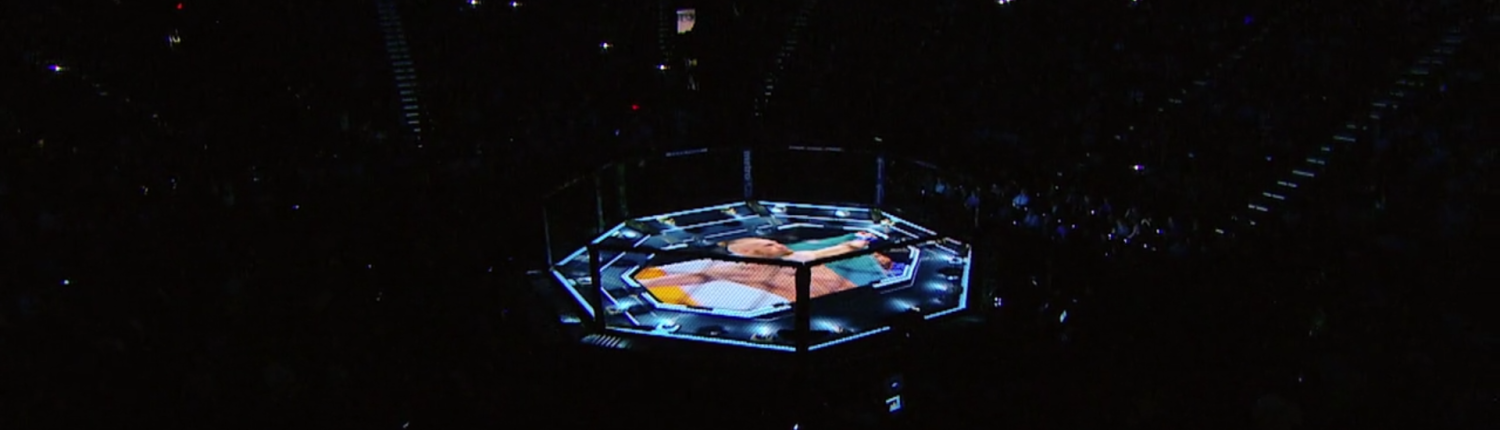 UFC_StagePlugin2-1500x430-2